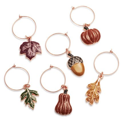 Sur La Table Harvest Wine Charms, Set of 6, Multi
