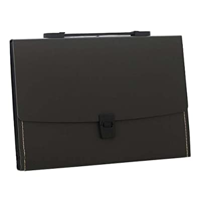 13 Pockets Portable File Holder A4 Document Organizer Information Bag-Black