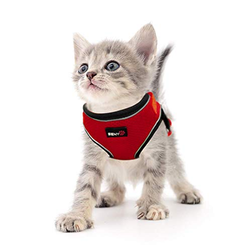 SENYEPETS Breathable Mesh Cat Harness and Leash with Durable D Ring and Metal Lock System, Escape Proof Vest with Adjustable Straps for Puppy Kitty Rabbit. (S, Red) (Harness D-ring Cat)