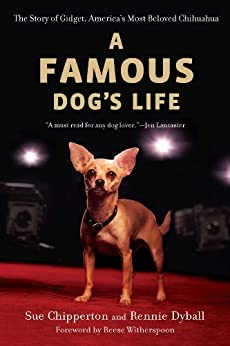 A Famous Dog's Life: The Story of Gidget, America's Most Beloved Chihuahua by [Chipperton, Sue, Dyball, Rennie]