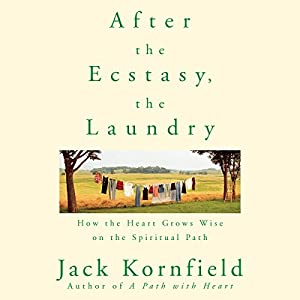 After the Ecstasy, the Laundry | Livre audio