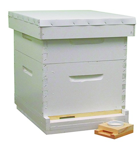 beeline-apiaries-painted-assembled-hive-kit-10-frames