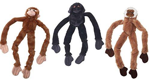 (Skinneeez Monkey)