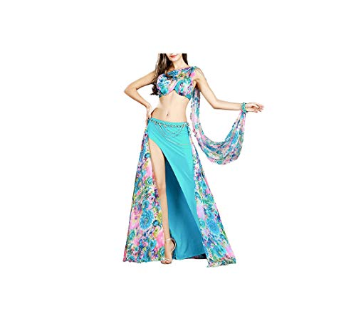 Professional Belly Dance Costume Set 3 Colors Bellydance Clothes Outfit 8834,Lake Blue,L -