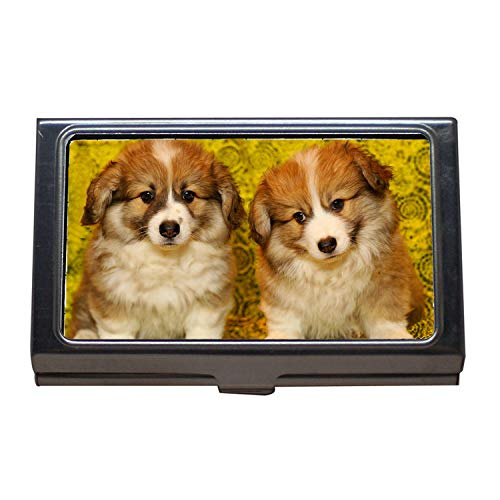 Business Name Card Holder,Puppies The Pembroke Welsh Corgi Pet Darling,Business Card Case Stainless Steel