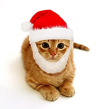 Dog or Cat Santa Costume