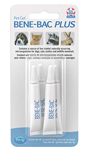 PetAg Bene-Bac Plus Pet Gel FOS Prebiotic and Probiotic, 4 Pk