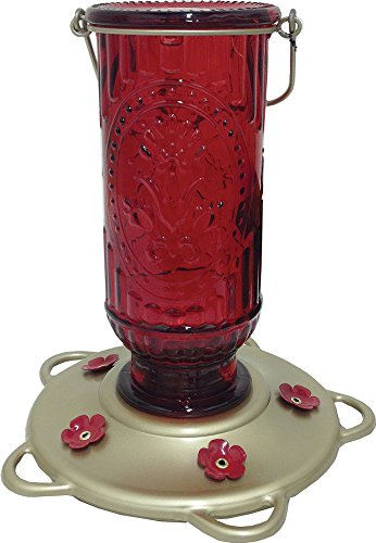 (More Birds Hummingbird Feeder, Glass Hummingbird Feeders, Red, 5 Feeding Stations, 20-Ounce Nectar Capacity, Vintage Antique Bottle )