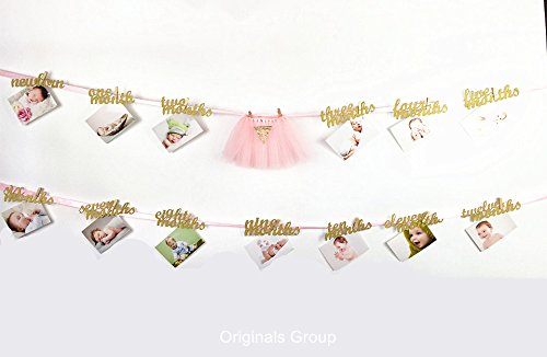 Princess Photo - Originals Group Newborn to 12 Months Photo Banner, First Birthday Decorations, First Birthday Garland Birthday Decorations for Girls Princess, baby room decor