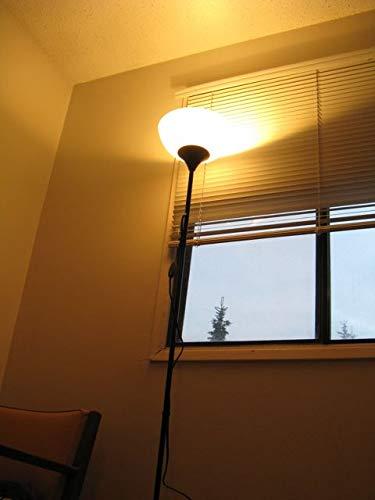 Azhien Ampoule LED R7S 118mm 10W Not Dimmable,Blanc Chaud 3000K,10 Watt Équivalent Lampe Halogene 48W 60W 75W, 1000LM, 360 Degrés, J Type J118 R7S Led Ampoules, Lot de 2