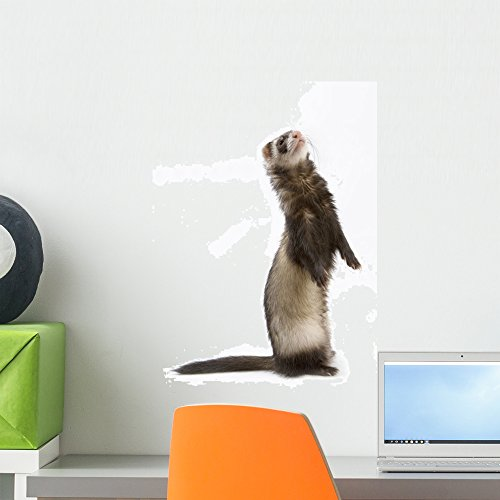 Wallmonkeys Staying Ferret Wall Decal Peel and Stick Graphic WM164590 (18 in H x 12 in W)