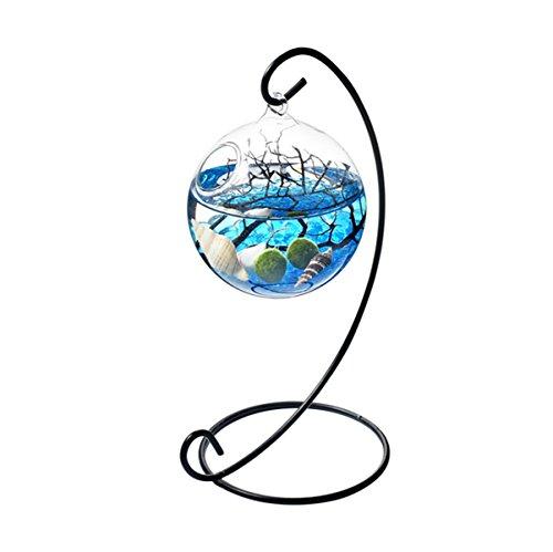 NewDreamWorld Table Aquarium Kit - 2 x 10 mm Aquatic Living Moss Balls Small Stones of Glass Black Fan Coral Branch in a 3.5