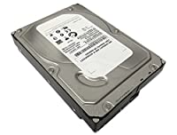 "Seagate/IBM ST31000524NS 1TB 7200RPM SATA II 3.0Gb/s 32MB Cache 3.5"" Enterprise Hard Drive (PC, RAID, NAS, CCTV DVR) -w/1 Year Warrany"