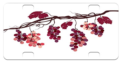Fruit Mini License Plate by Ambesonne, Vine Branch with Colorful Grapes Agriculture Themed Illustration Healthy Food Options, High Gloss Aluminum Novelty Plate, 2.94 L x 5.88 W Inches, - Vine Illustration Grape