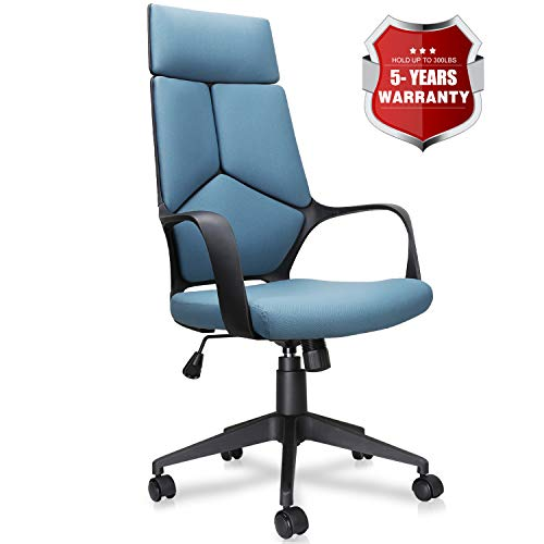 Becozier Mordern Office Chair, High Back Computer Task Chairs Desk Chairs with Detachable Headrest, Adjustable Height, Mesh Cushion for Home and Office Conference Room (Unique Design: Blue)
