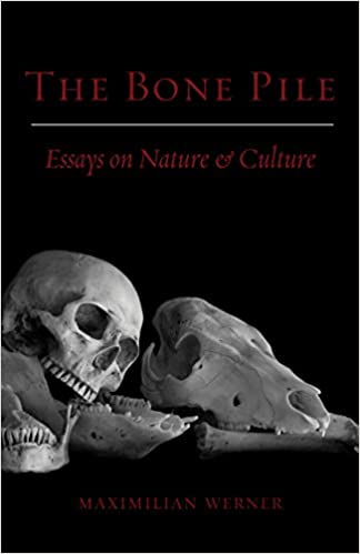 Sample Essays High School The Bone Pile Essays On Nature And Culture Maximilian Werner   Amazoncom Books English Essay Outline Format also High School Admission Essay Samples The Bone Pile Essays On Nature And Culture Maximilian Werner  English Essay Internet