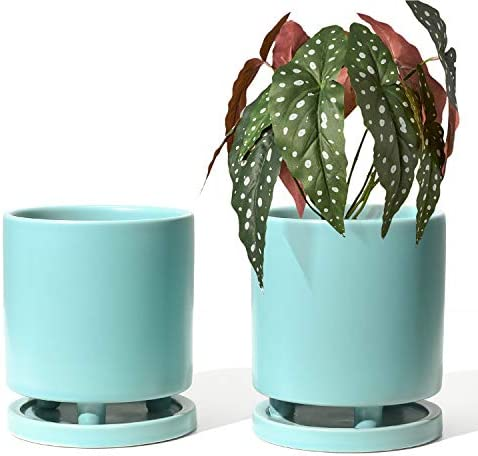 Le Tauci Plant Pots With Drainage Holes And Saucers 4 7 Inch Aloe Plant Pot Small Flower Pot Ceramic Pots For Plants For Succulent Cactus Indoor Planter Set Of 2 Turquoise Garden Outdoor