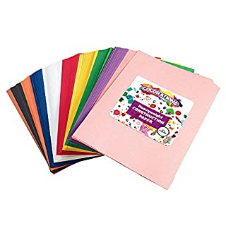 "Construction Paper Pack, 10 Assorted Colors, 9"" x 12"", 600 Sheets, Heavy Weight Construction Paper, Crafts, Art, Kids Art, Painting, Coloring, Drawing, Creating, Arts and Crafts (Item # SMARTSTK)"