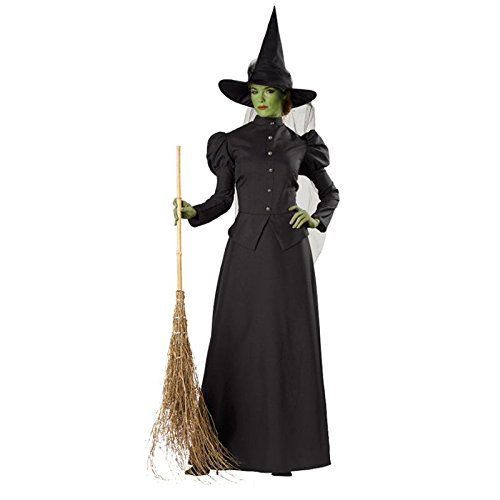 Witch (Classic Witch Adult Womens Costumes)