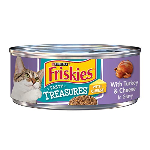 Purina Friskies Gravy Wet Cat Food; Tasty Treasures With Turkey & Cheese - 5.5 oz. Can