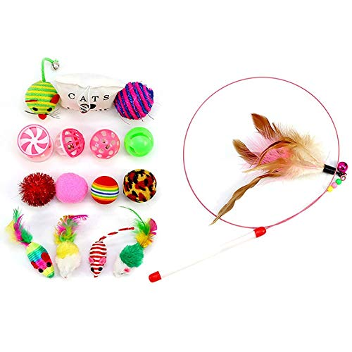 Amazon.com : Best Quality 16pcs/Set Toys Variety Pack Cats Funny Mouse Catnip sisal Balls Gift Value Feather Sets for Small cat pet Supplies Toy Set : Pet ...