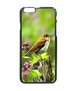 iPhone 6 Case - Wild Birds - Veery Patterned Protective Skin Hard Case Cover for Apple iPhone 6 4.7