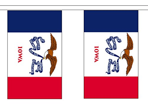 (State of Iowa String 30 Flag Polyester Material Bunting - 9m (30') Long)