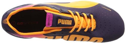 Puma Da Calcio Da Uomo Evospeed 2.2 Fg Blackberry