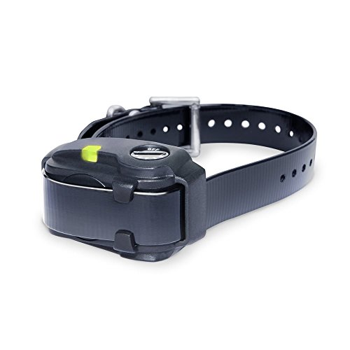 10 best dogtra bark collar ys300