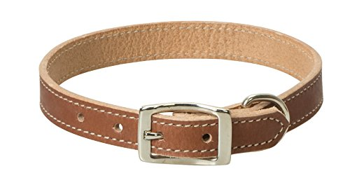 Terrain D.O.G. Weaver Pet Single-Ply Leather Dog Collar - Single Ply Leather