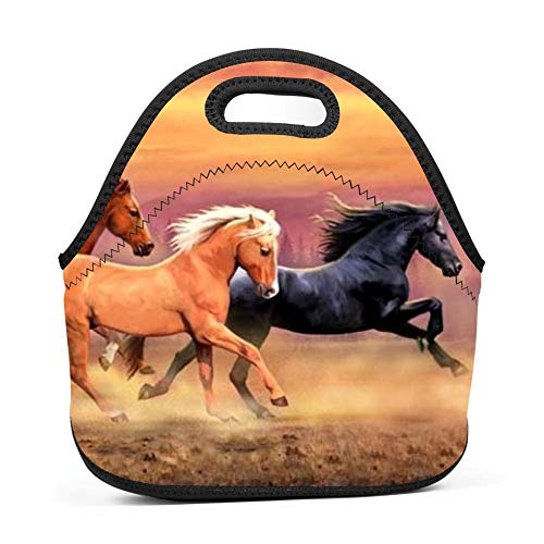 Family Dream Mountains Wild Horses Lunch Bag Portable Handbag Bento Pouch Lunchbox Baby Bag Multi-Purpose Storage Bag for Outdoor Tour School Office Picnic Zipper Satchel