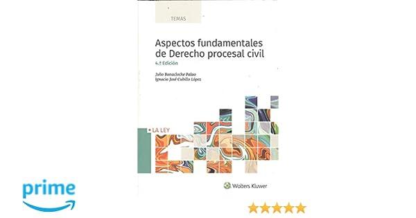 Aspectos fundamentales de Derecho procesal civil 4ª ed. - 2018 TEMAS: Amazon.es: Julio Banacloche Palao: Libros