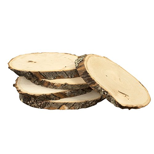 Basswood Tree Plaques, 5 inches to 7 inches, Kiln Dried Real Wood Slabs, Natural Wood Slices, Rustic Wedding Decorations and Home Decor, (Set of 5) by 88th & State