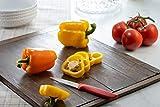 Schärfer Kitchen Knife Set, German Precision