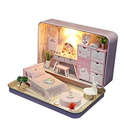 WYD Mark Iron Box Miniature Theater Micro Landscape Doll House Hand Assembled Doll House Kit Mother's Day Father's Day Birthday Gift (Pink): Toys & Games