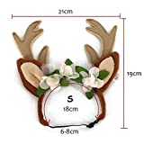 Pet Reindeer Antlers Christmas Costume for Dogs/Cat/Puppy- Adjustable Cute Dog Headwear Accessory for Small/Medium/Large Dogs (S(for Cats&Small Dogs))