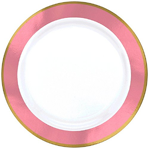 Amscan Premium Plastic Round Plates With Pink Border   Party Tableware   6 Pk.