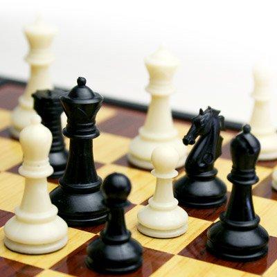Amazon | プラスチック製チェス...