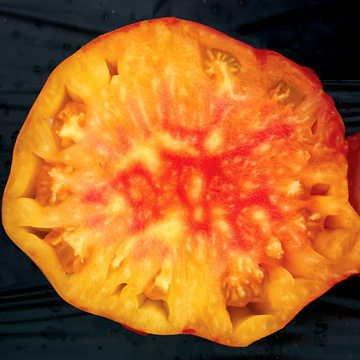 Park Seed Pineapple Tomato -