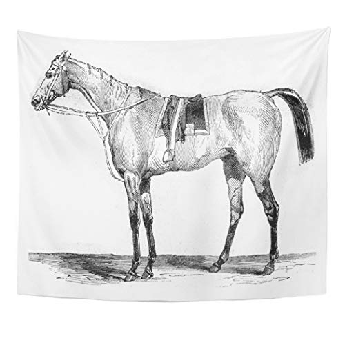 (Semtomn Tapestry Horse Thoroughbred Racehorse Vintage Engraved Magasin Pittoresque 1845 OldDecor Wall Hanging for Living Room Bedroom Dorm 50x60 inches)