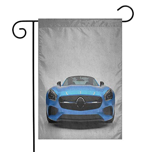 (duommhome Teen Room Garden Flag Modern Blue Sports Car Power Prestige Speed Fast Vehicle Automobile Image Decorative Flags for Garden Yard Lawn W12 x L18 Blue Black Grey)