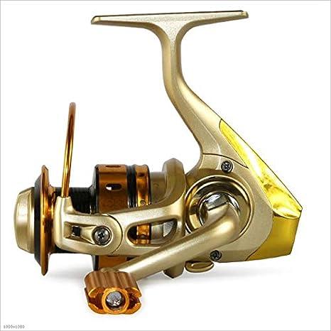 WYDM Carrete para Agua Salada o de Agua Dulce, Spinning Fishing ...