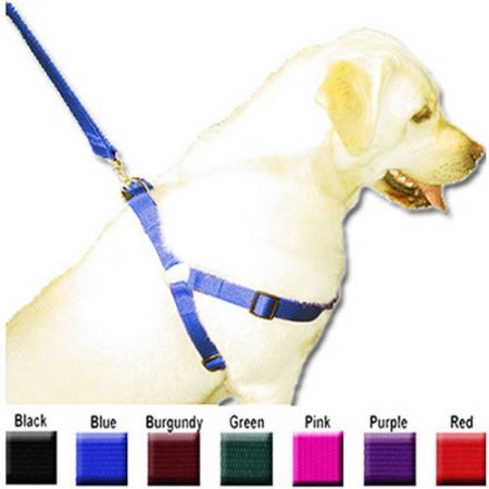 Majestic Pet 9'' - 15'' Adjustable Step In Harness 10-45 lbs Dog - Majestic Pet Lead