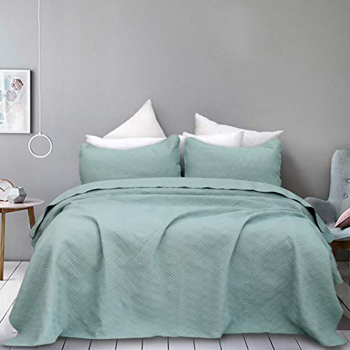 Natural Union Bedspread Set Full Size Oversized Luxury Quilt Sets Hypoallergenic Bed Cover with Shams Embossed Super Soft and Lightweight Fade/Stain Resistant (PowderBlue)