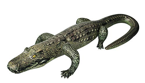 - Jet Creations Inflatable Gator 49 inch Long Safari Great for Pool, Party Decoration, an-Gator