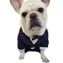Cute Small Pet Dog Cat Wedding Tuxedo Suit Garment Clothes Dog Party Outfit Shirt Costume Luxury Dog Puppy Coat Jacket With Dog Bowtie (M, Black)