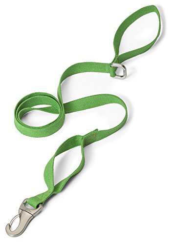 West Paw Strolls Dog Leash with Hemp, Large, Greenery, Made in USA