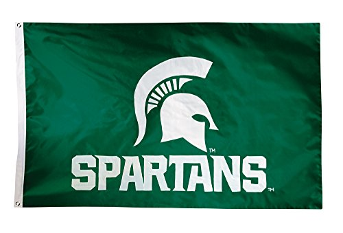 (BSI NCAA Michigan State Spartans 2-Sided Nylon Applique Flag with Grommets, 3' x 5', Green)