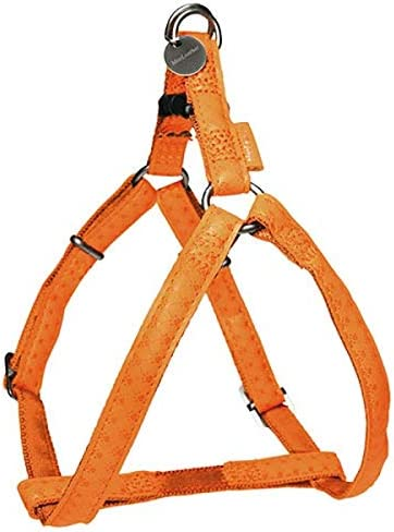 Doogy Arnés Ajustable MC Leather Naranja: Amazon.es: Productos ...