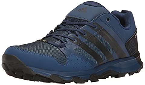 adidas Outdoor Men's Kanadia 7 TR Gore-Tex Trail Running Shoe, Mystery Blue/Black/Core Blue, 11.5 M US